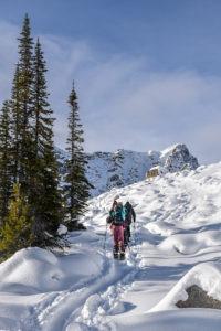 ski touring uphill skills